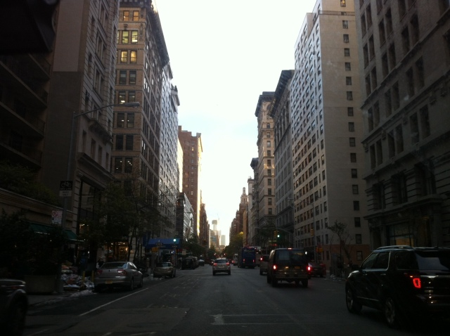 Cruising down 5th ave.